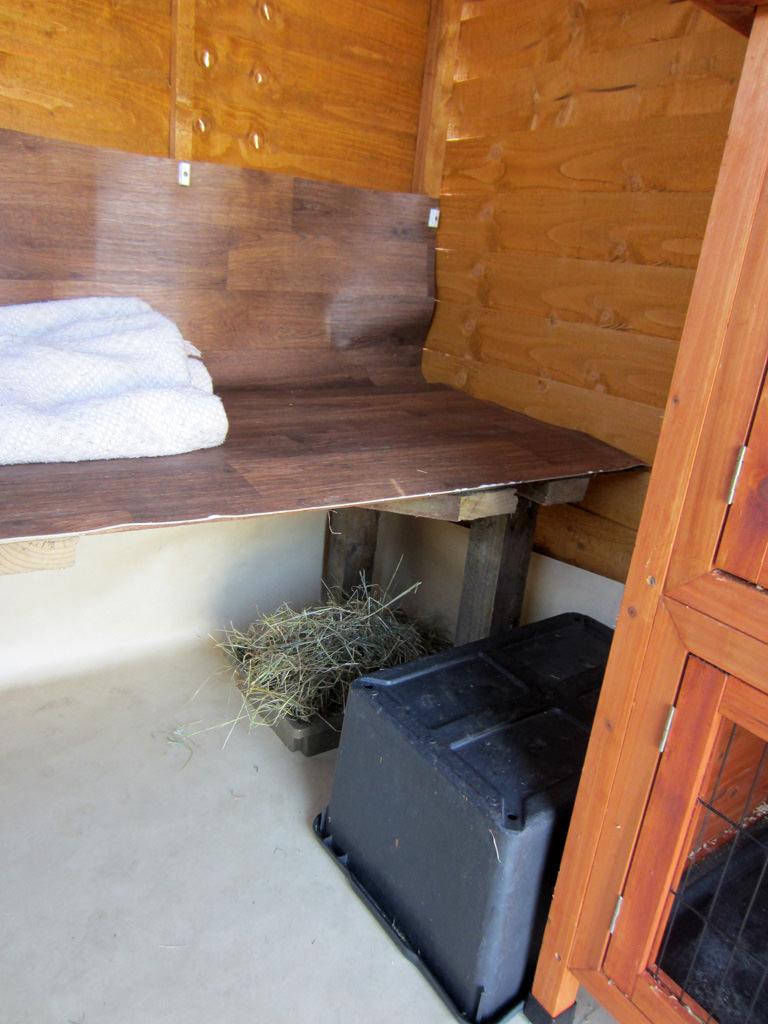 shed-shelf